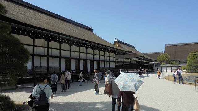 京都御所11.jpg