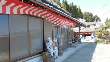 広棚の芝桜20.jpg