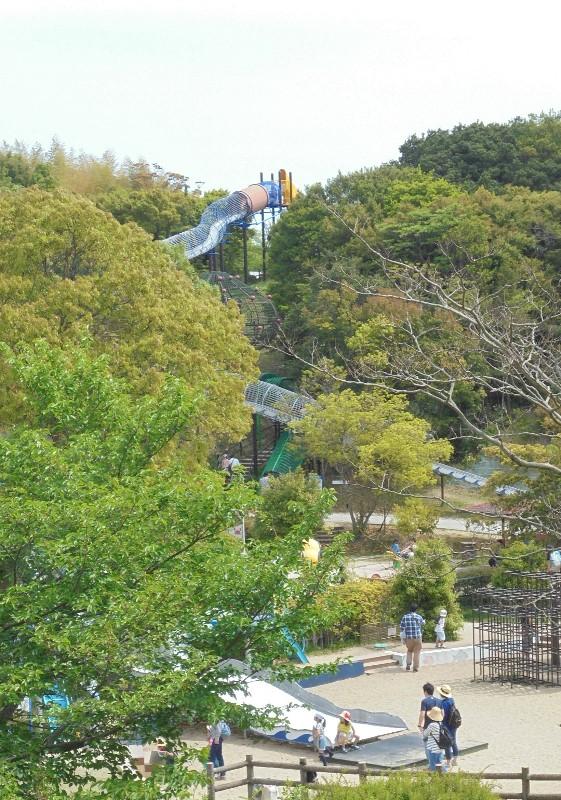 淡路島公園15.jpg