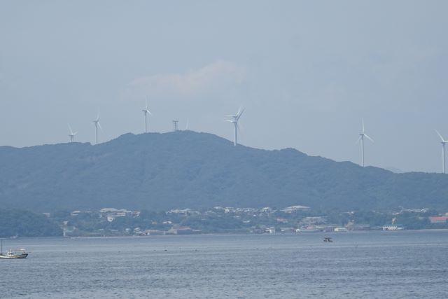 五色浜10.JPG