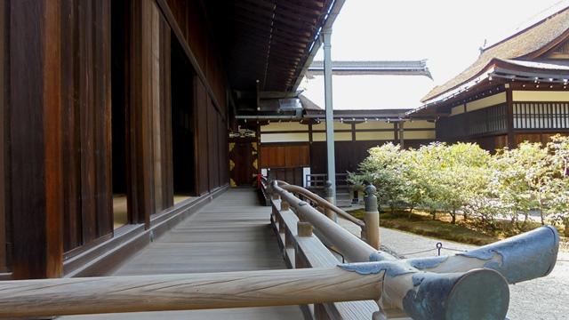 京都御所15.jpg