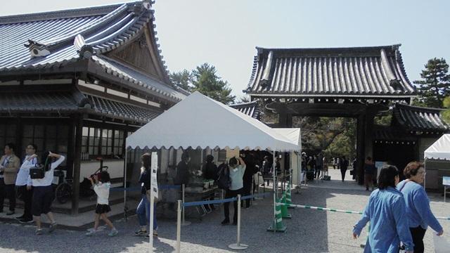 京都御所6.jpg