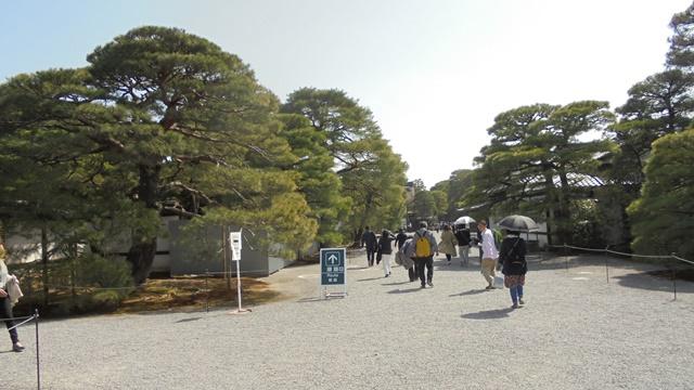 京都御所9.jpg