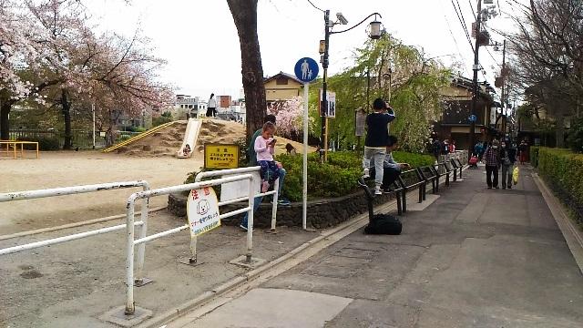 先斗町11.jpg