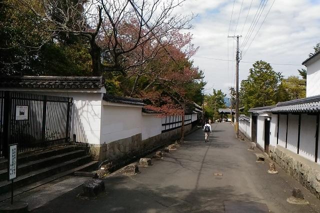 南禅寺13.jpg