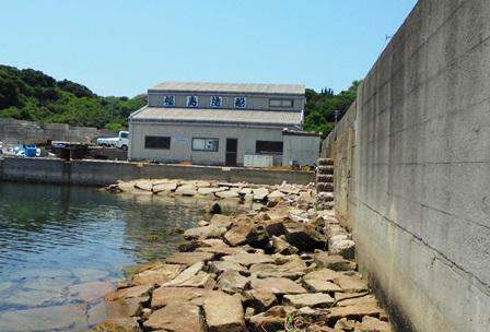 旧都志漁港7.jpg