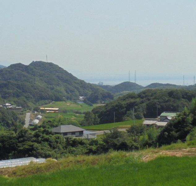 東浦断層12.jpg
