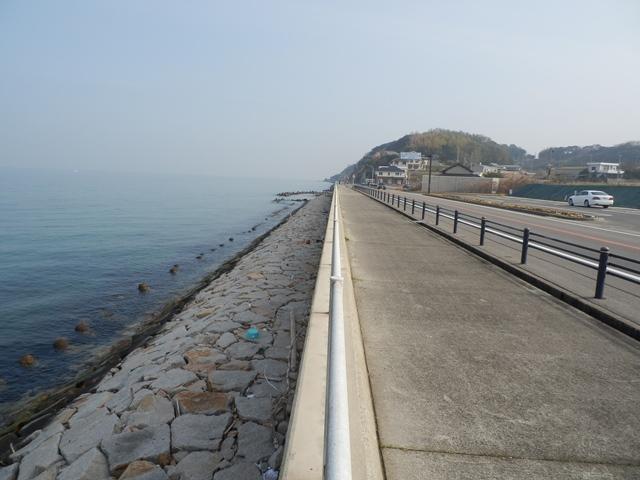 淡路島ロングライド30.jpg