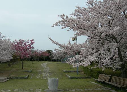 淡路島公園.jpg