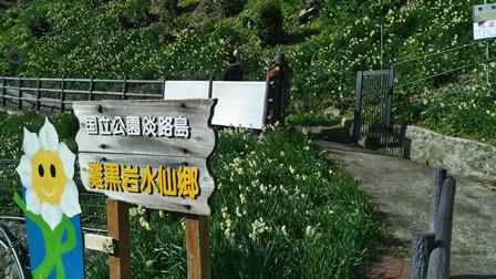 灘黒岩水仙郷12.jpg
